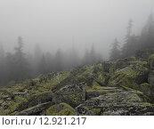 Уральские горы в тумане. Стоковое фото, фотограф Алексей Куртеев / Фотобанк Лори