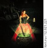 Купить «Хэллоуин. Ведьма варит волшебное зелье», фото № 12921221, снято 24 августа 2014 г. (c) katalinks / Фотобанк Лори