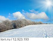 Купить «First winter snow and mountain beech forest», фото № 12923193, снято 22 октября 2010 г. (c) Юрий Брыкайло / Фотобанк Лори