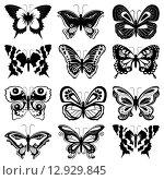 Купить «Set of butterfly silhouettes», иллюстрация № 12929845 (c) PantherMedia / Фотобанк Лори