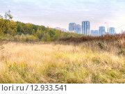 Купить «Москва. Окраина», фото № 12933541, снято 2 июля 2015 г. (c) Parmenov Pavel / Фотобанк Лори