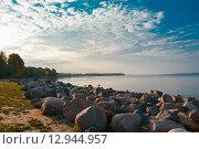 Берег Финского залива. Стоковое фото, фотограф Яна Шеховцева / Фотобанк Лори