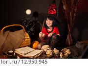 Купить «Маленькая девочка  в образе ведьмы на Хэллоуин», фото № 12950945, снято 23 октября 2014 г. (c) Останина Екатерина / Фотобанк Лори