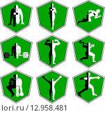 Набор зеленых спортивных эмблем. Стоковая иллюстрация, иллюстратор Буркина Светлана / Фотобанк Лори