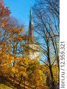 Купить «Осенний парк. Таллин, Эстония», фото № 12959321, снято 1 ноября 2009 г. (c) Andrei Nekrassov / Фотобанк Лори