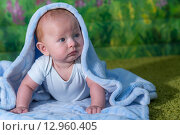 Портрет маленького ребенка под синим полотенцем. Стоковое фото, фотограф Евгений Чернышов / Фотобанк Лори