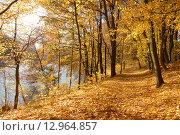 Купить «Осенний красивый пейзаж на берегу водоёма», эксклюзивное фото № 12964857, снято 7 июля 2020 г. (c) Svet / Фотобанк Лори