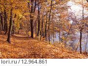 Купить «Осенний красивый пейзаж на берегу озера», эксклюзивное фото № 12964861, снято 22 июля 2019 г. (c) Svet / Фотобанк Лори