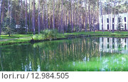 Купить «Пруд в зоне отдыха», видеоролик № 12984505, снято 4 октября 2015 г. (c) Потийко Сергей / Фотобанк Лори
