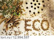 """Поверхность старой раковины с семенами и горохом и надпись """"ECO"""" Стоковое фото, фотограф Виктор Колдунов / Фотобанк Лори"""