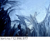 Купить «Frosty pattern at a winter window», фото № 12996977, снято 25 января 2010 г. (c) ElenArt / Фотобанк Лори