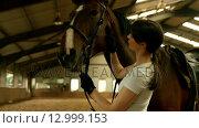 Купить «Smiling brunette stroking her horse », видеоролик № 12999153, снято 15 октября 2019 г. (c) Wavebreak Media / Фотобанк Лори