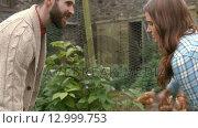 Купить «Young couple in the garden with dog and hens», видеоролик № 12999753, снято 15 октября 2019 г. (c) Wavebreak Media / Фотобанк Лори