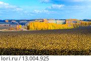 Осенний пейзаж. Стоковое фото, фотограф Валерий Апальков / Фотобанк Лори