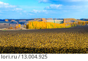 Купить «Осенний пейзаж», фото № 13004925, снято 13 октября 2013 г. (c) Валерий Апальков / Фотобанк Лори