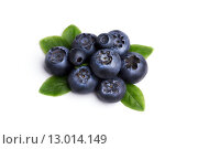 Купить «Bilberries or blueberries with leaves Retouched to resemble painting, excessive berries' details muted, texture smoothed.», фото № 13014149, снято 15 декабря 2018 г. (c) PantherMedia / Фотобанк Лори