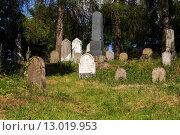 Купить «forgotten and unkempt Jewish cemetery with the strangers», фото № 13019953, снято 23 июля 2019 г. (c) PantherMedia / Фотобанк Лори