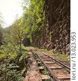 Ущелье Гуам, железная дорога. Стоковое фото, фотограф Игорь Яковлев / Фотобанк Лори