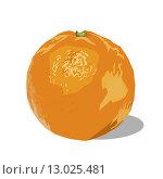 Купить «Апельсин», иллюстрация № 13025481 (c) Веснинов Янис / Фотобанк Лори