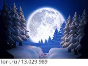 Купить «Winter snow scene», фото № 13029989, снято 19 июля 2019 г. (c) Wavebreak Media / Фотобанк Лори