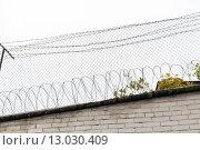 Купить «barb wire fence over gray sky», фото № 13030409, снято 30 сентября 2015 г. (c) Syda Productions / Фотобанк Лори