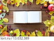 Купить «empty book with autumn leaves, fruits and berries», фото № 13032389, снято 19 октября 2015 г. (c) Syda Productions / Фотобанк Лори