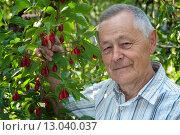 Купить «Довольный садовод возле дерева кизила», эксклюзивное фото № 13040037, снято 6 сентября 2015 г. (c) Короленко Елена / Фотобанк Лори