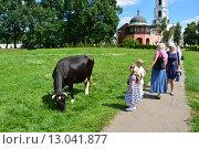 Купить «Корова на территории Николо-Угрешского монастыря», эксклюзивное фото № 13041877, снято 25 июля 2015 г. (c) lana1501 / Фотобанк Лори