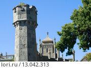 Купить «Сторожевая башня у дороги к  Воронцовскому дворцу. Алупка, Крым», эксклюзивное фото № 13042313, снято 19 сентября 2015 г. (c) Александр Щепин / Фотобанк Лори
