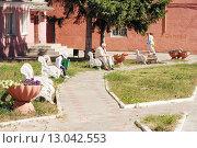 Купить «Небольшая зона отдыха со скамейками в городе Ельце Липецкой области», эксклюзивное фото № 13042553, снято 21 августа 2015 г. (c) stargal / Фотобанк Лори