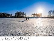 Рыбаки с уловом идут по льду водоема. Стоковое фото, фотограф Александр Корчагин / Фотобанк Лори