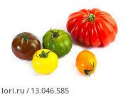 Купить «Разноцветные помидоры, Solanum lycopersicum», фото № 13046585, снято 15 апреля 2013 г. (c) Morgenstjerne / Фотобанк Лори