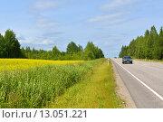 Купить «Шоссе вдоль рапсовых (лат. Brassica napus) полей», фото № 13051221, снято 16 июля 2015 г. (c) Валерия Попова / Фотобанк Лори