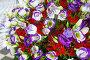 Big wonderful flowers bouquet, фото № 13072093, снято 24 марта 2014 г. (c) Юрий Брыкайло / Фотобанк Лори