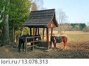 Купить «Лошади у кормушки на природе», фото № 13078313, снято 21 марта 2007 г. (c) Татьяна Белова / Фотобанк Лори