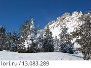 Купить «Занесенные снегом скалы и зимний лес, Таганай, Откликной гребень, ели в снегу», фото № 13083289, снято 10 марта 2013 г. (c) Юрий Карачев / Фотобанк Лори