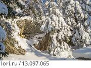 Скала в снегу. Стоковое фото, фотограф Олег Вдовин / Фотобанк Лори