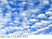 Купить «Небесный пейзаж с кучевыми облаками», фото № 13097917, снято 13 августа 2015 г. (c) Сергей Трофименко / Фотобанк Лори
