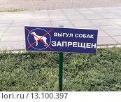 """Купить «Табличка """"Выгул собак запрещен""""», фото № 13100397, снято 18 января 2020 г. (c) Vladimir Sviridenko / Фотобанк Лори"""