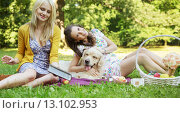 Young women playing with dog. Стоковое фото, агентство Ingram Publishing / Фотобанк Лори