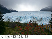 Купить «Perito Moreno Glacier, Lake Argentino, Los Glaciares National Park, Santa Cruz Province, Patagonia, Argentina», фото № 13158493, снято 2 декабря 2013 г. (c) Ingram Publishing / Фотобанк Лори