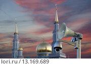 Купить «Московская соборная мечеть, одна из крупнейших мечетей России и Европы, Москва», фото № 13169689, снято 6 ноября 2015 г. (c) Владимир Журавлев / Фотобанк Лори