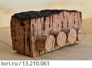 Кусок настоящего португальского пробкового дуба с врезанными в него пробками на светлом деревянном фоне. Стоковое фото, фотограф Svetlana Agaeva / Фотобанк Лори