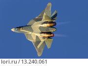 Т-50 ПАК-ФА на МАКС 2015. Редакционное фото, фотограф Артём Аникеев / Фотобанк Лори