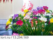 Купить «Spring bouquet.», фото № 13294169, снято 28 марта 2014 г. (c) Юрий Брыкайло / Фотобанк Лори