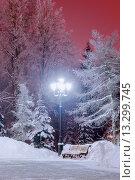 Купить «Темный вечер в зимнем городском парке», фото № 13299745, снято 16 июня 2019 г. (c) Зезелина Марина / Фотобанк Лори