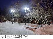Купить «Ночной зимний парк», фото № 13299761, снято 17 июня 2019 г. (c) Зезелина Марина / Фотобанк Лори