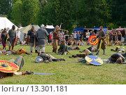 Купить «После битвы викингов. Ярмарка викингов на Аландских островах, Финляндия - одна из крупнейших в Скандинавии», фото № 13301181, снято 25 июля 2013 г. (c) Валерия Попова / Фотобанк Лори