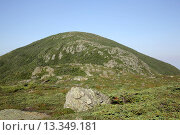 Купить «Appalachian Trail...Mount Eisenhower from Mount Eisenhower Trail during the summer months. Located in the White Mountains, New Hampshire USA.», фото № 13349181, снято 20 февраля 2018 г. (c) age Fotostock / Фотобанк Лори