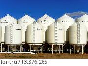 Купить «Planting Seed Plant US Route 2 Montana», фото № 13376265, снято 29 февраля 2020 г. (c) age Fotostock / Фотобанк Лори
